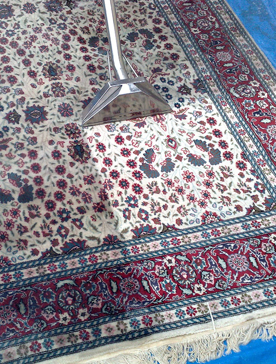 pro-Rug-Cleaning-services-dix-hills-new-york-Polyester-and-polyester-blends